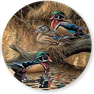 Wood Duck Coasters Coasters by Rosemary Millette