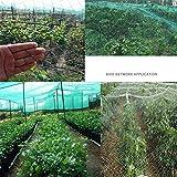 JIAYUAN Voiles d'ombrage Potager filet de protection net, Protection contre les insectes net légumes du jardin, serre, plantes, fruits, fleurs, cultures, répulsifs de pesticides, en 2 tailles