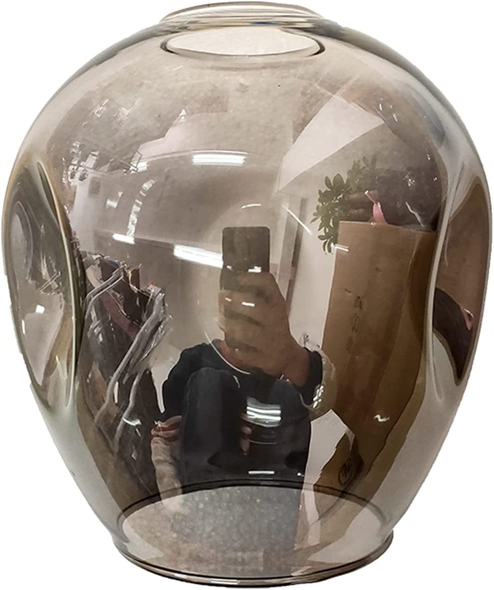 L1YAFYA LED Chandeliers Glass Study Reservation Restaurant Living Cafe 2021 model Room