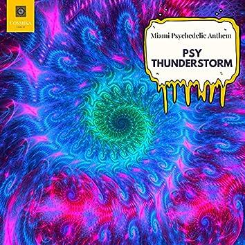 Psy Thunderstorm - Miami Psychedelic Anthem