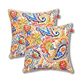 Pcinfuns Set of 2 Patio Indoor/Outdoor All Weather Decorative Throw Pillow Cover Cushion Case f…