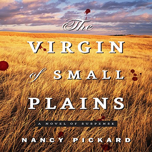 The Virgin of Small Plains audiobook cover art
