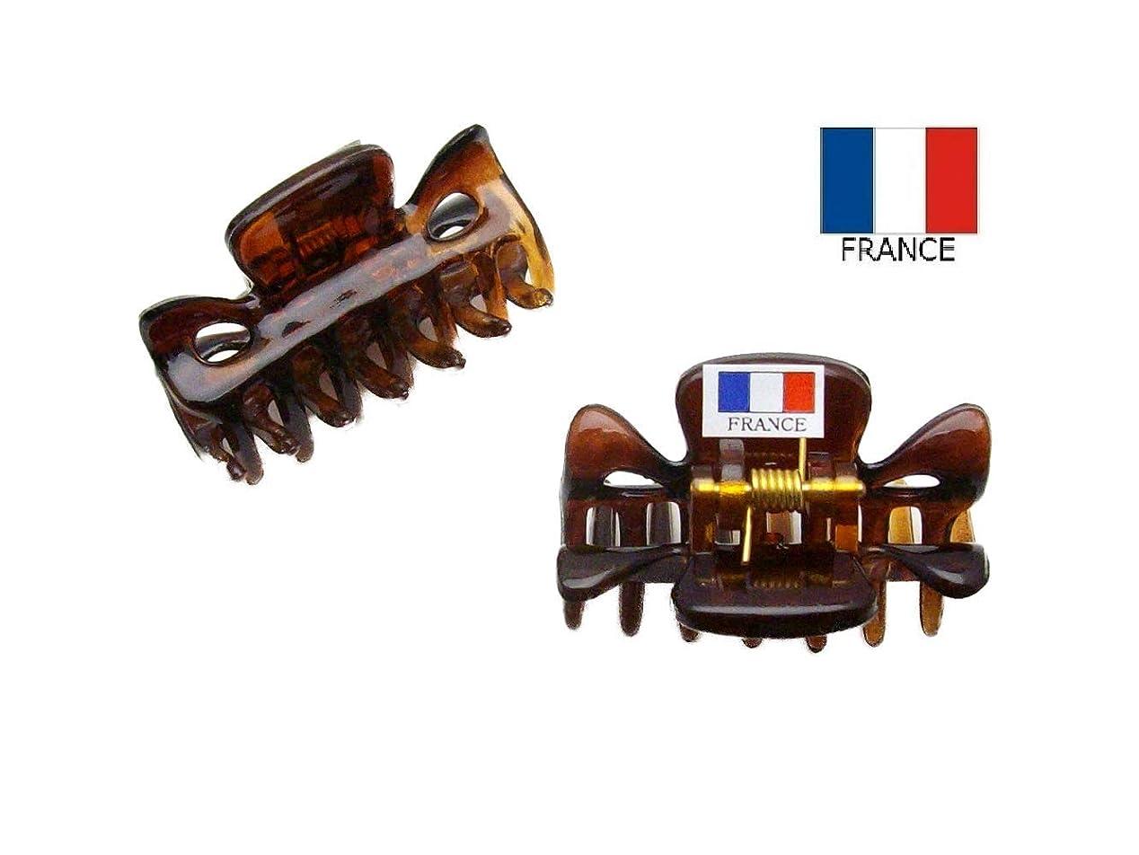 在庫直面する引く【Made in France】 バンスクリップ ミニミニ 3.7cm 2個セット ベッコウ