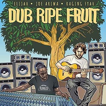 Dub Ripe Fruit