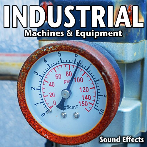 Industrial Pump Motor Running with Bright Whine (Version 1)