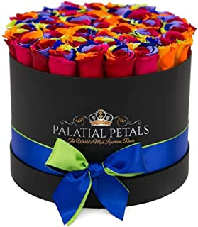 Rainbow Roses That Last A Year | 365 Day Year-Long Lasting Green Roses | Preserved Forever Rose Arrangement Flower Box Bouquet | Birthday Gifts for Her Women Girlfriend Mom (Black)