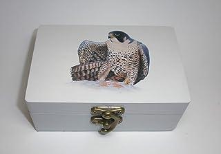 "Caja artesana decorada""Peregrino"", Halcón peregrino (Falco peregrinus), Peregrine falcon"