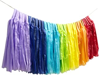 Boieo Tissue Paper Tassels Garlands Party Decorations, 35 pcs