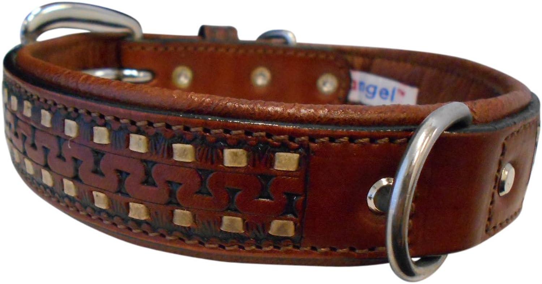 Dog Tulsa Leather 11097 Supplies Pet Angel Collar, Brown