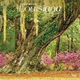 Louisiana Wild & Scenic 2021 12 x 12 Inch Monthly Square Wall Calendar, USA United States of America Southeast State Nature