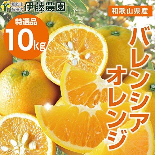 バレンシア オレンジ 箱詰め 送料無料 みかん 蜜柑 (特選10kg)
