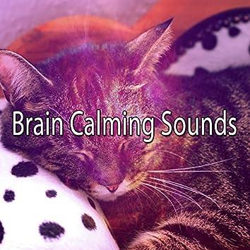 Brain Calming Sounds