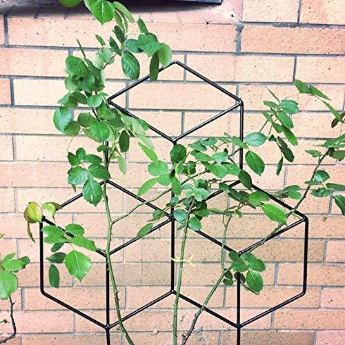 IKENOKOI『園芸支柱』