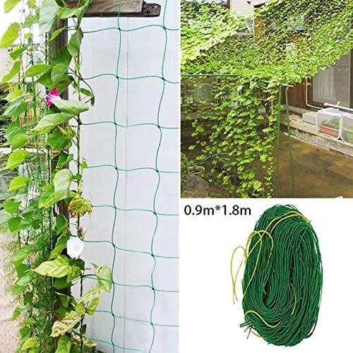 ESJY Tomaten Rankhilfe, Ranknetz Premium mit großer Maschenweite für den perfekten Wachstum von Gurken, Tomaten und Kletterpflanzen Das Optimale Rankhilfe Netz für Garten und Gewächshaus