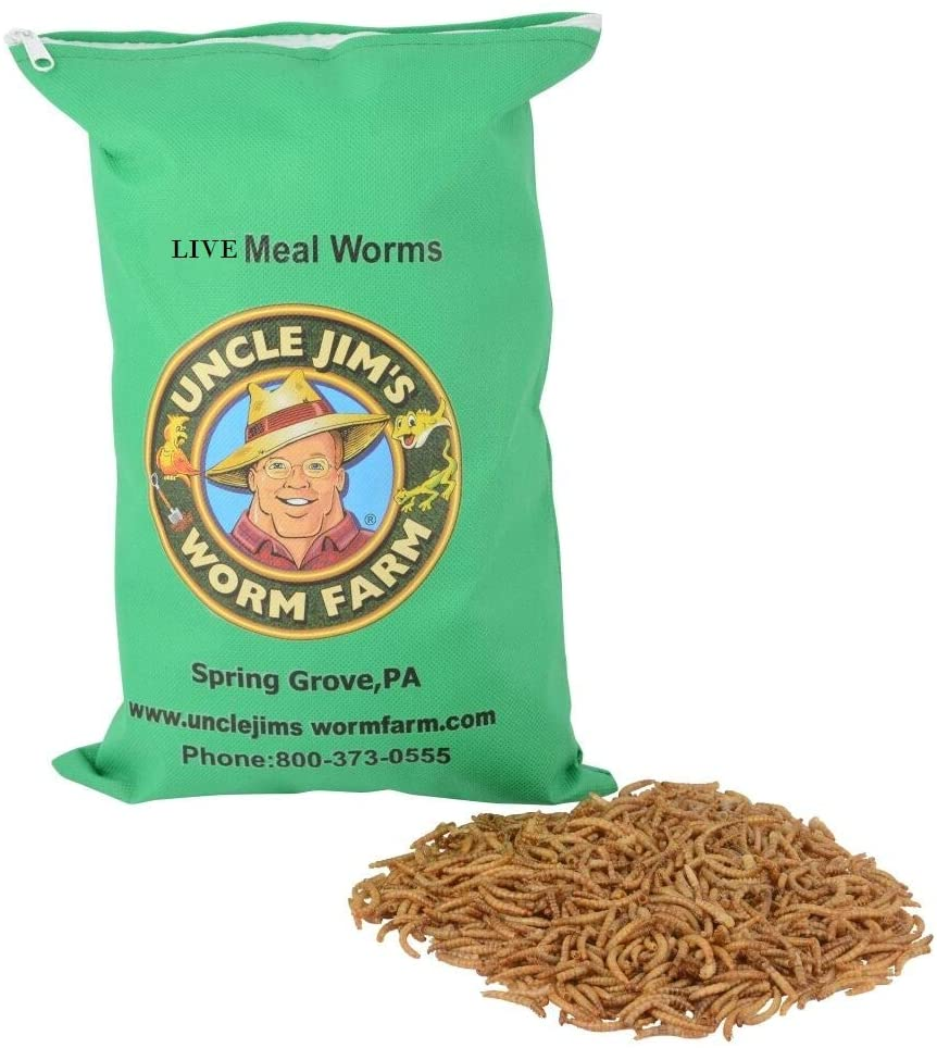 Live Meal Worms Max 87% OFF Under blast sales 3000 Count