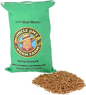 Uncle Jim's Worm Farm Live Mealworms (2000 Count)