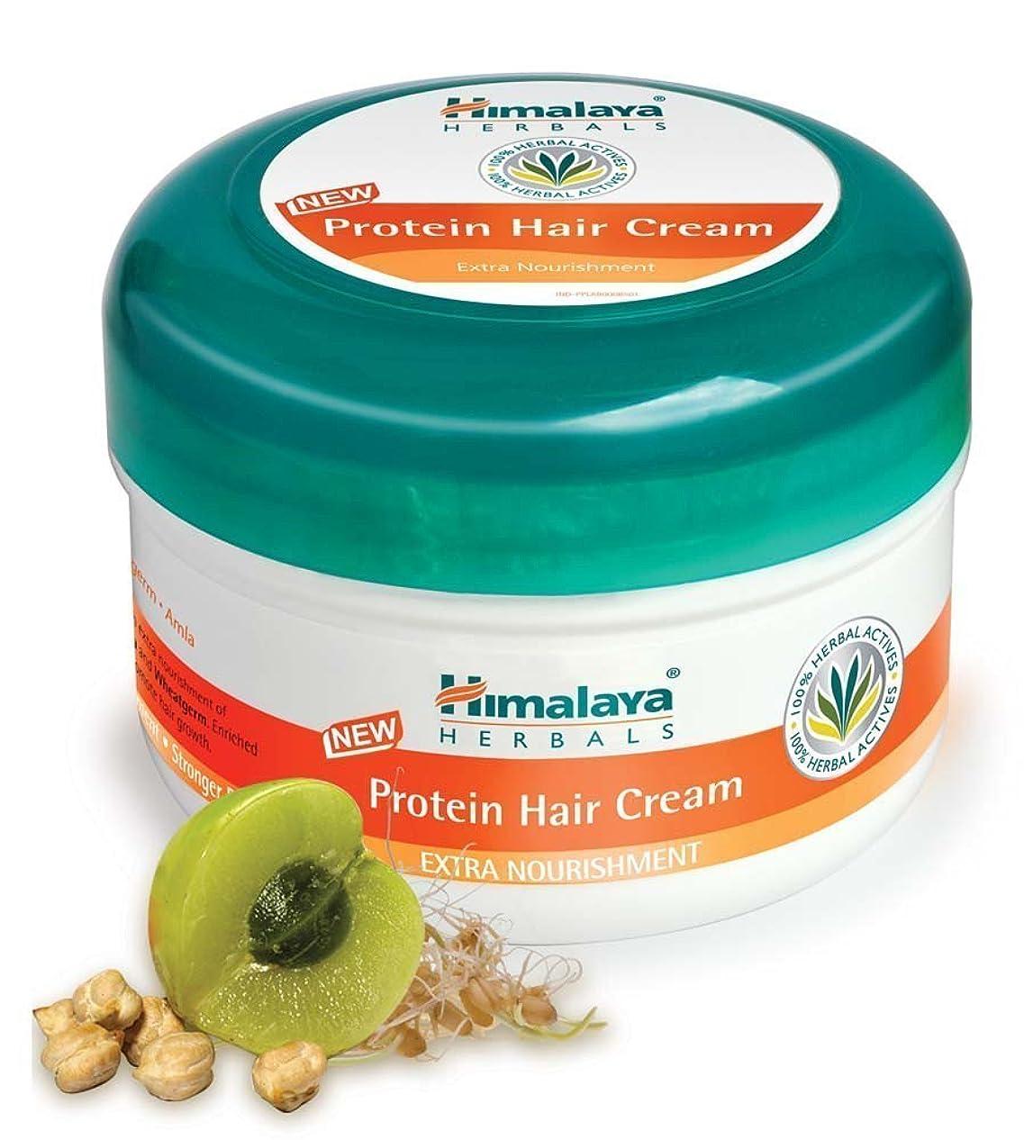 年次混沌メイエラHimalaya Protein Hair Cream 175 g