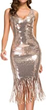 VVMCURVE Women's Sexy V Neck Sequin Glitter Bodycon Stretchy Club Flapper Dress 20s Great Gatsby Party Gowns