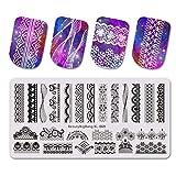 Estampado de uñas de acero inoxidable para esmalte de uñas, concha de arte de uñas - plantilla de imagen de fruta - Pack: 69