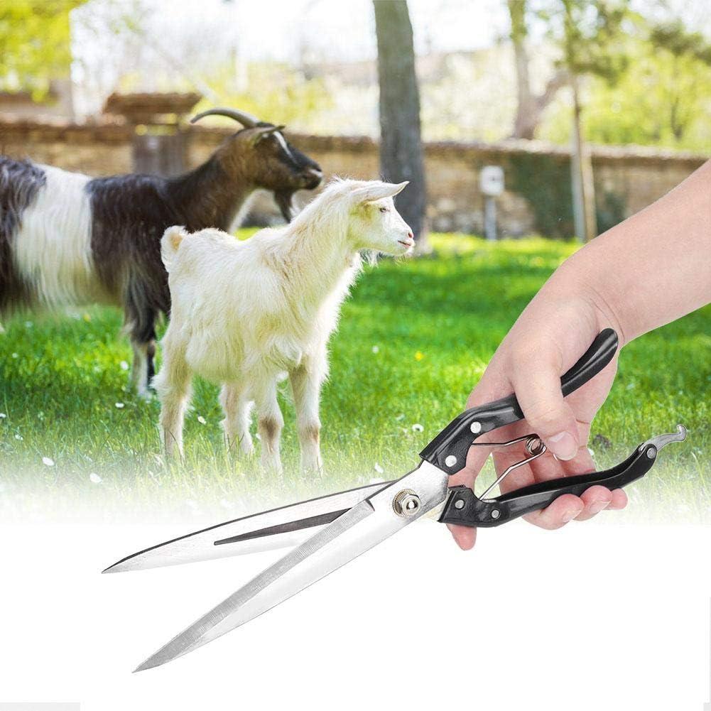 Caballo 3 Lana de Oveja Herramienta para Mascotas de Granja Acero Pelo de Mascota Pssopp Tijeras de Mano de Cabra Tijeras de Corte para Oveja Conejo