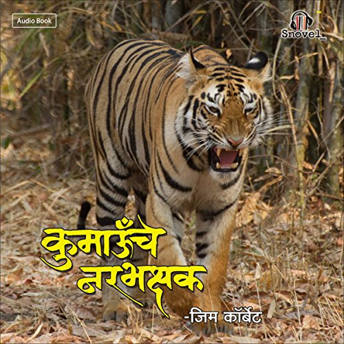Chaughadche Wagh audiobook cover art