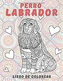 Perro labrador - Libro de colorear