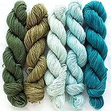 Manos Del Uruguay Silk Blend Fino Mini-Skein Set 6 Flora, 5 x 20g, Merino Silk Hand Dyed Yarn