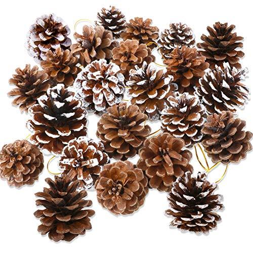 HOWAF 25 Stück natürliche Tannenzapfen, 5 bis 6 cm Tannenzapfen zum basteln, Kiefernzapfen tannenzapfen mit Schnur für Christbaumschmuck Weihnachtsdeko Adventsdeko