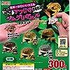 世界一かわいいカエル プニュプニュ きもかわ! アフリカジムグリガエル マスコット [全5種セット(フルコンプ)] ガチャガチャ カプセルトイ