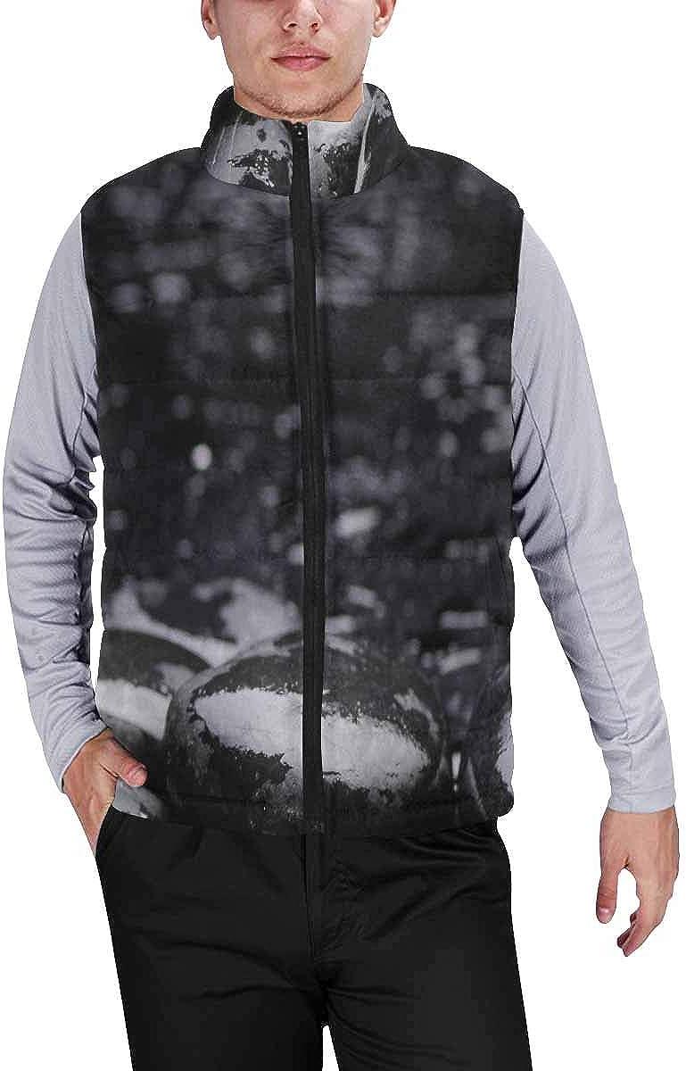 InterestPrint Men's Lightweight Sleeveless Jacket for Travel Hiking Running Funny Giraffe with Monkey