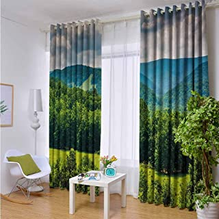 Andrea Sam Eclipse Curtains Landscape,View of Mountains in Potomac Highlands of West Virginia Rural Scenery Picture,Forest Green,W104 by L72 Inch Bedroom Blackout Curtains