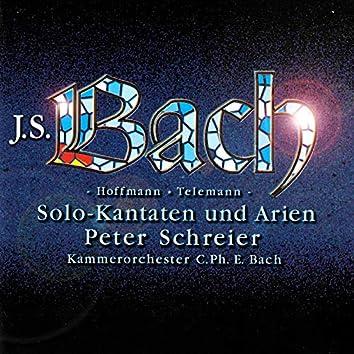 Bach, J.S, Hoffmann & Telemann: Solo Cantatas & Arias