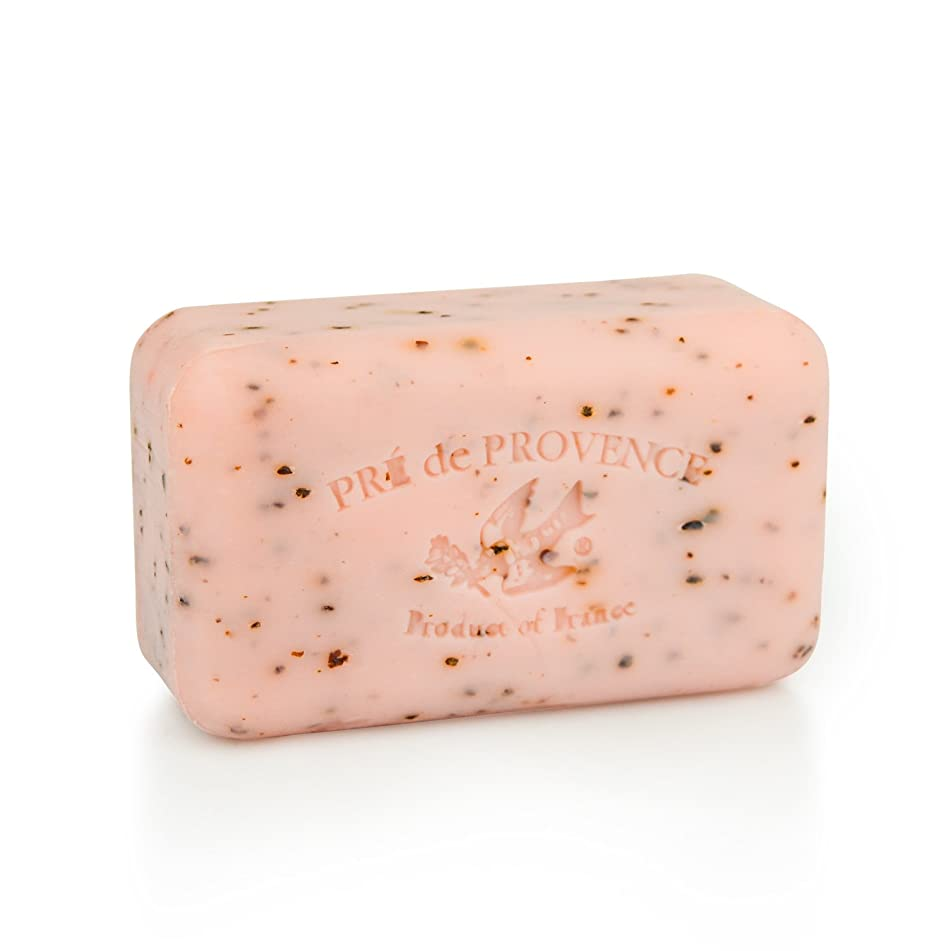 Pre de Provence Artisanal French Soap Bar Enriched with Shea Butter, Quad-Milled For A Smooth & Rich Lather (150 grams) - Juicy Pomegranate