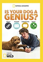 is your dog a genius