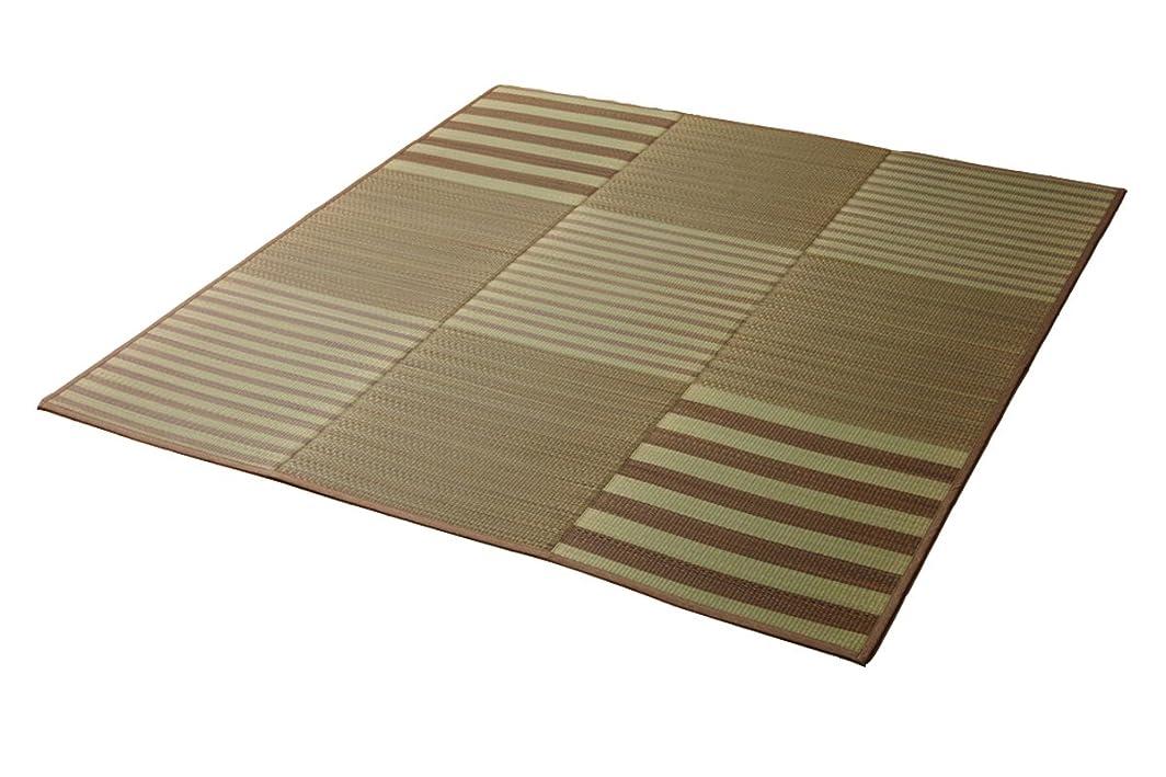 気づく解任マガジン撥水 い草ラグ カーペット 『HSラスタ』【IB】約190×250cm ブラウン(#8462480) 撥水加工