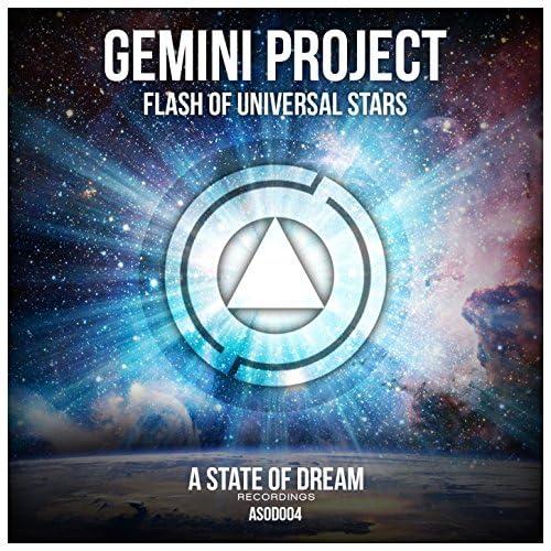 Gemini Project