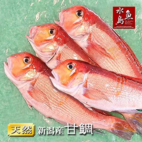 魚水島 新潟産 天然 甘鯛 アマダイ(グジ)300〜399g・4尾(生冷凍)