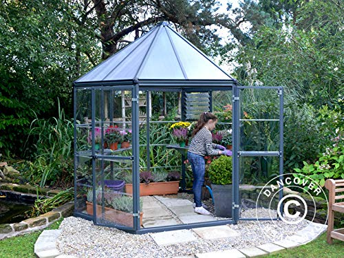 Dancover Invernadero orangerie de policarbonato Oasis, Hexagonal 3,91m², 2,13x2,47x2,67m, Antracita: Amazon.es: Jardín