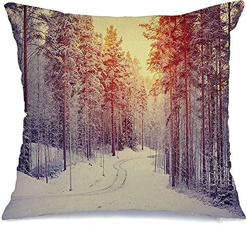 Throw Pillow Cover Sunny Tree Way Paisaje de Invierno Sol Nevado Bosque Rural Naturaleza Parques congelados Parque Exterior Blanco Cojín Decorativo de Lino cómodo Funda de Almohada para Sill