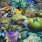 Dekostoff Tiffi, Unterwasserwelt, bunt (Meterware ab 25cm x