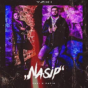Nasip