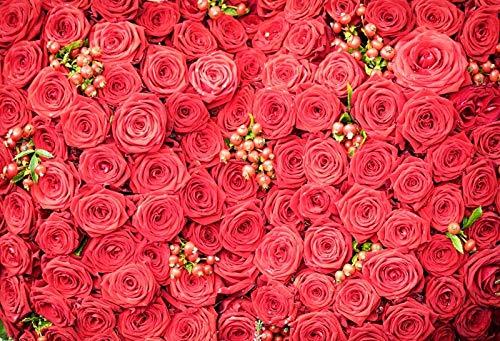Foto de Boda Fondo de Pared Flor Rosa Ceremonia de Escenario Fiesta de cumpleaños de bebé Amor Retrato Fotografía Telón de Fondo A21 10x10ft / 3x3m