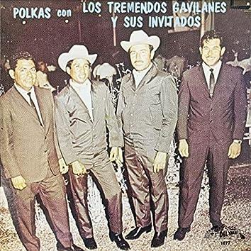 Polkas Con Los Tremendos Gavilanes Y Sus Invitados (Instrumental)
