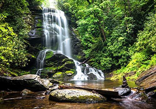 wandmotiv24 Fototapete Natur-wasserfall Bach Dschungel XL 350 x 245 cm - 7 Teile Fototapeten, Wandbild, Motivtapeten, Vlies-Tapeten Urwald, Dschungel, Tropen M1066