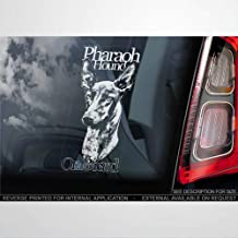DONL9BAUER Pharaoh Hound Car Window Sticker Kelb tal-Fenek Podenco Dog Sign Decal for Cars Trucks Bumpers Laptops