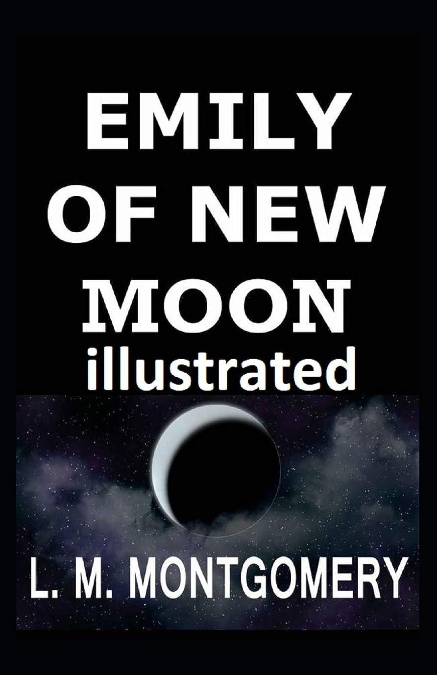 レキシコン刈るバラエティEmily of New Moon illustrated
