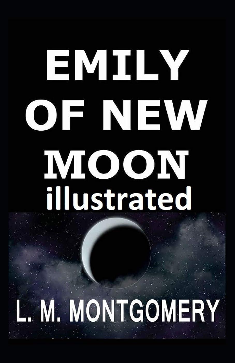 表面お金ゴム表向きEmily of New Moon illustrated