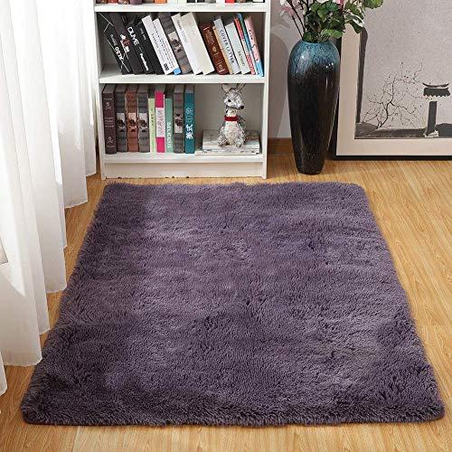 Txyk Alfombras Ultra Suaves para Interiores, Interiores y Suaves Alfombras de Sala de Estar aptas para niños Dormitorio Decoración para el hogar Alfombras de Dormitorio 60 * 120 cm (Gris Púrpura)
