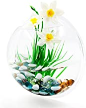 uxcell Wall Mounted Acrylic Fishbowl Betta Tank Hanging Plant Pot Bowl Home Decoration