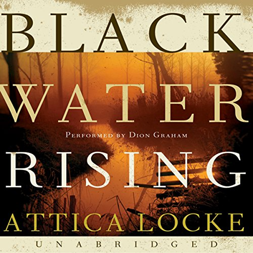 Black Water Rising audiobook cover art